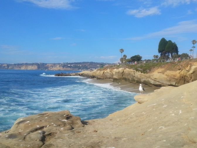 Look at you, La Jolla.